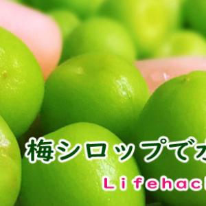 【梅シロップの作りかた】暑い季節を乗り切ろう!後始末がとても楽チンな方法です