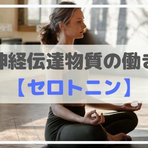 神経伝達物質【セロトニン】