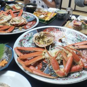 都会の大規模水族館より楽しめる!越前松島水族館