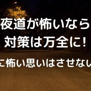 夜道が怖いなら対策は万全に!娘に怖い思いはさせないで【リアルな恐怖体験】