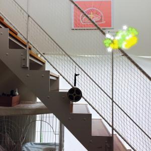【無印良品の家・窓の家】キャットタワーいらずの家