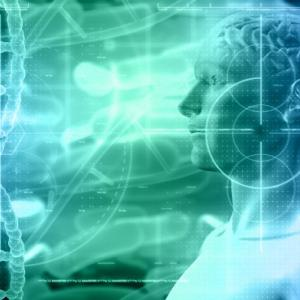 脳は1.2㎏ほどの柔らかい司令塔!人体にどのような司令を出しているのでしょう!