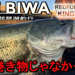 久しぶりの琵琶湖