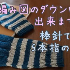 5本指手袋 ❝大きめサイズ❞ or ❝男性用❞の編み方