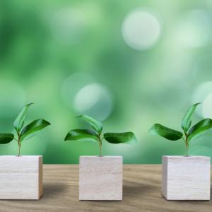 株初心者でも分かる株式投資で重要な7つのポイント!