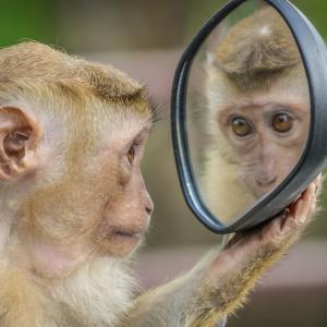 お風呂の鏡の汚れ(うろこ)を安く簡単にキレイにするおすすめの方法をご紹介します。