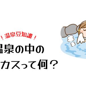 温泉に浮かんでる白いカス(浮遊物)。湯の花って何?