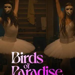 『バーズ・オブ・パラダイス』感想 Amazonオリジナル映画 バレエは色々な意味でスリリングだった