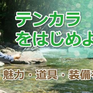 日本伝統釣法「テンカラ」をはじめよう! 道具・装備・動作を解説
