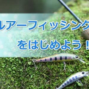 「渓流ルアーフィッシング」とは?道具や釣り方を初心者向けに解説!