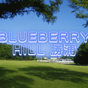 2021年夏【ブルーベリーヒル勝浦】関東ITSで格安宿泊!