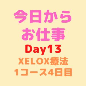 【Day13】今日からお仕事