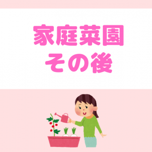 【Day46】家庭菜園その後