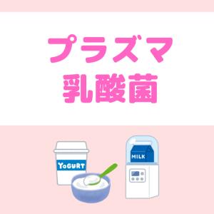 【Day49】プラズマ乳酸菌でヨーグルト作り