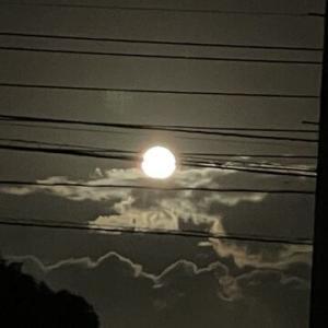 お月様、見えたね。