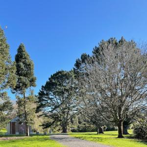 お気に入りの散歩道 – Chelsea Estate Heritage Parkへ