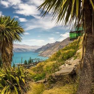 ボランティア活動で入手したニュージーランド自然環境のトリビア三選
