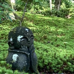 【京都】お寺でのんびり 圓光寺