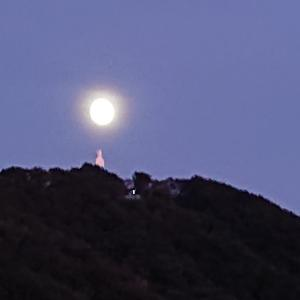 中秋の名月と満月