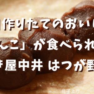 【炊きたてあんこ】毎日作りたてのおいしい「あんこ」が食べられるお店!「餡焚き屋中井 はつが野本店」