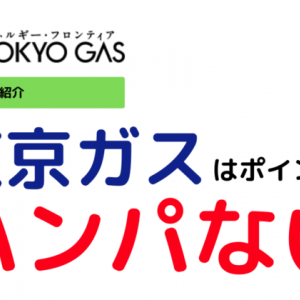 【関東エリア一人暮らし向け】東京ガスでんきトップクラスに安い電力会社は。今ならかなりお得になります