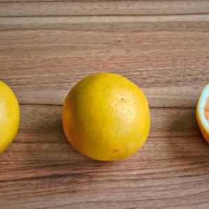 グレープフルーツの香りは、幸福感とリフレッシュを与える