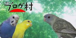 『ALLBIRDS』休刊