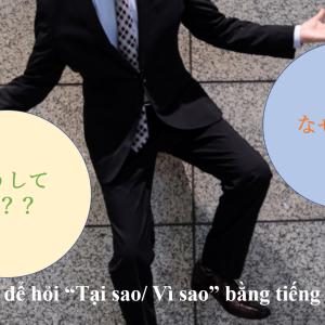 "Làm thế nào để hỏi ""Tại sao/ Vì sao"" bằng tiếng Nhật「どうして/なぜ?」Vol. 15"