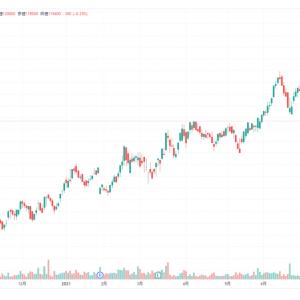 サムティ・レジデンシャル投資法人株の暴落。原因はどこから?