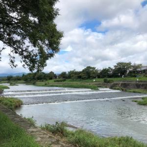 今日の賀茂川ウォーキング  2021.9.18