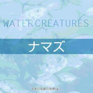 ナマズの名前の由来は?地震との関係や伝承も多い不思議な魚!意外に多い鯰料理屋