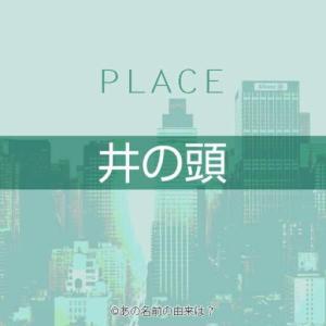 井の頭の名前の由来は?神田川源水の井の頭公園の池がある地!東京都内の地名の語源