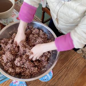 菌活 - 小豆味噌作りの巻