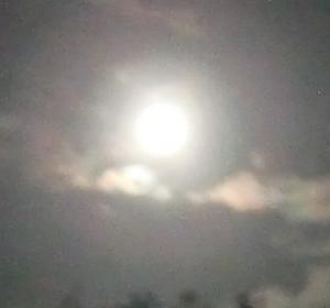 中秋の名月ー月と人体の関わりは不思議なほど多い