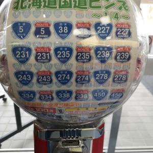 【国道ピンズ】完全制覇の費用は36249円!-効率の良い道の駅の巡り方-