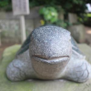#29 [第2話] けろさんぽ ~酒列磯前神社へ行ってきたよ~