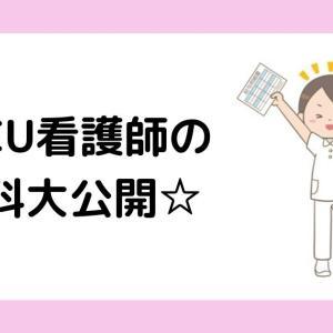 NICU時代の給料大公開☆新卒でNICU看護師になったビビ