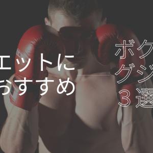ダイエットに最適!?格闘技未経験者にオススメのボクシングジム3選【横浜市編】