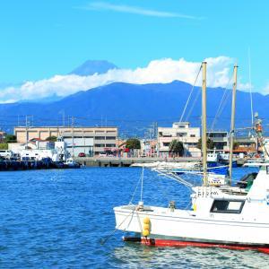 【食べ歩きに最適】「沼津港」静岡で第2位の水揚げ量を誇る港 沼津を守る東洋一の水門も見どころ