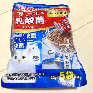 【愛猫にあげてみた】チャオ すごい乳酸菌クランキー【かつお節味】