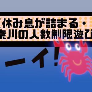 夏休み、神奈川の子供遊びスポット(人数制限あり)