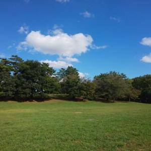 公園を散歩しました 🌳💕