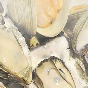 """【ペアリングのための論文解説コラム】魚介類の""""生臭さ""""を増幅させるお酒の秘密"""