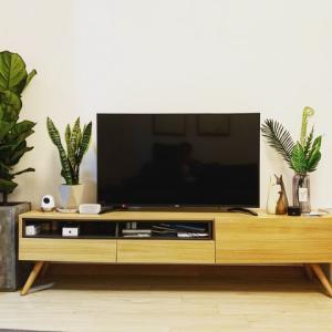 動画を見るなら大画面!U-NEXTを気軽にテレビで見る方法