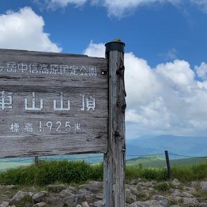 霧ヶ峰ハイキング・ニッコウキスゲ満開でした【車山・蝶々深山】