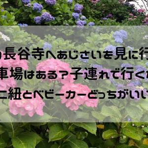 鎌倉の長谷寺へあじさいを見に行ってきた!駐車場はある?子連れで行くなら抱っこ紐とベビーカーどっちがいいの?