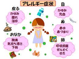 アレルギーの免疫バランスと4つの型を徹底解説!