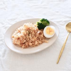 【レシピ】炊飯器で簡単!塩麹ささみで作るチキンライス