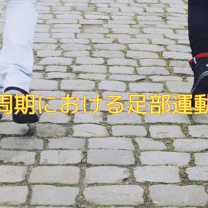 歩行における足部の動き 理学療法士なら知っておきたい足関節の運動連鎖【これを知れば歩行がわかる】