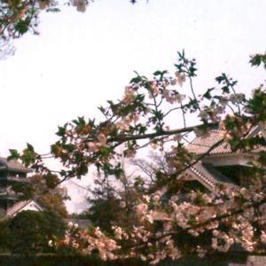 地元・熊本と隣県・大分を襲った震災から5年、改めて思うことと新たに思うこと